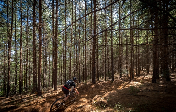 Ride the Beloved Country: Celebrating 10 Years of joberg2c